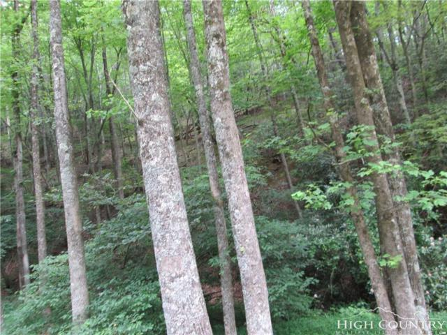 TBD SW Oklahoma Road Road, Roaring Gap, NC 28668 (MLS #202620) :: Keller Williams Realty - Exurbia Real Estate Group