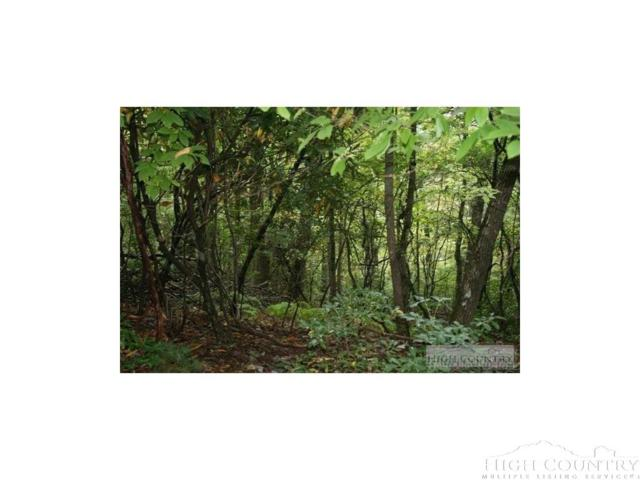 20 Lots Hidden Spring Road Extension, West Jefferson, NC 28694 (MLS #202841) :: Keller Williams Realty - Exurbia Real Estate Group