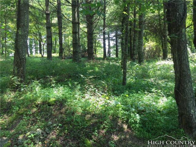 Lot 23 Chaska Trail, Sugar Grove, NC 28679 (MLS #202956) :: Keller Williams Realty - Exurbia Real Estate Group