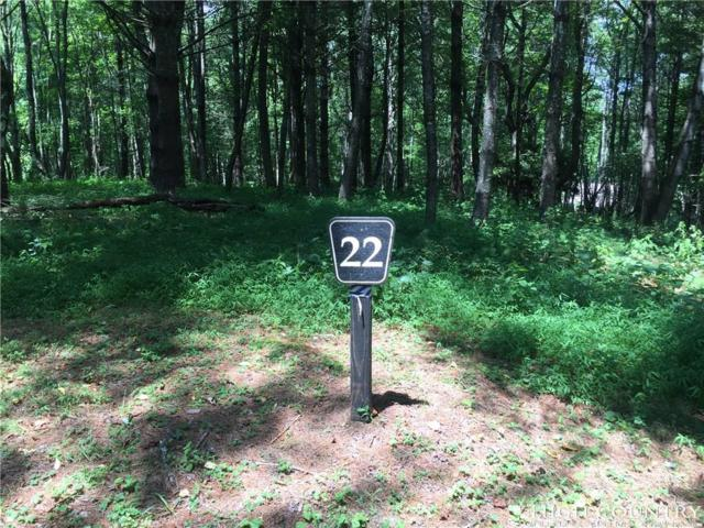 Lot 22 Chaska Trail, Sugar Grove, NC 28679 (MLS #202957) :: Keller Williams Realty - Exurbia Real Estate Group