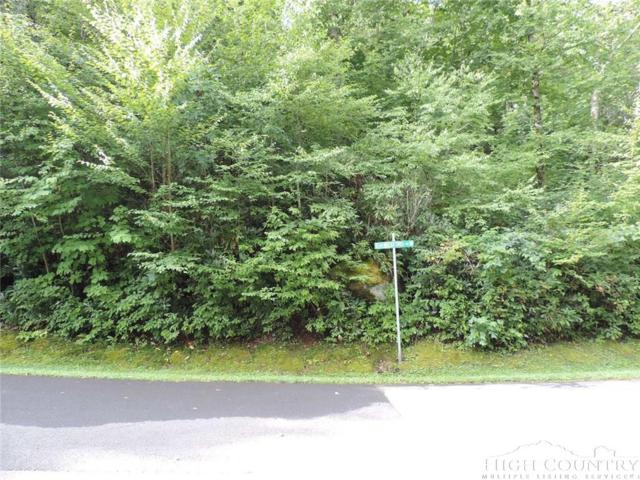 Lot 10R Kinsale Wexford Kilkenny, Boone, NC 28607 (MLS #203050) :: Keller Williams Realty - Exurbia Real Estate Group