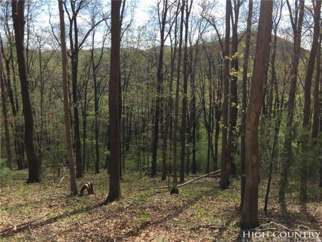 TBD Wind Dancer Ridge Access Road, West Jefferson, NC 28694 (MLS #203055) :: Keller Williams Realty - Exurbia Real Estate Group
