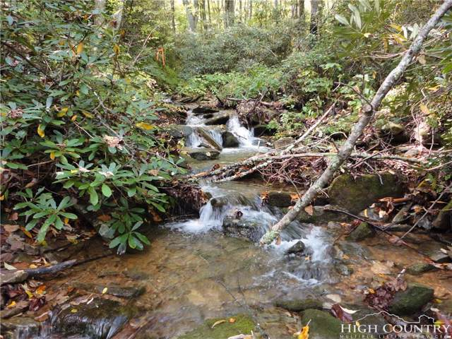 Lot 42 Dancing Bear Lane Lane, Blowing Rock, NC 28605 (MLS #203095) :: Keller Williams Realty - Exurbia Real Estate Group