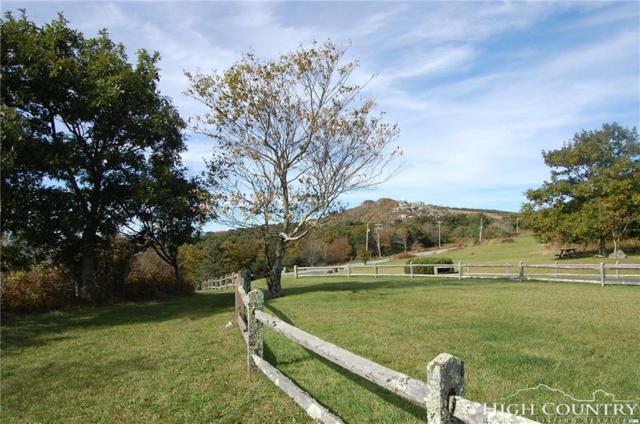 G1 Frosty Lane, Banner Elk, NC 28604 (MLS #203178) :: Keller Williams Realty - Exurbia Real Estate Group