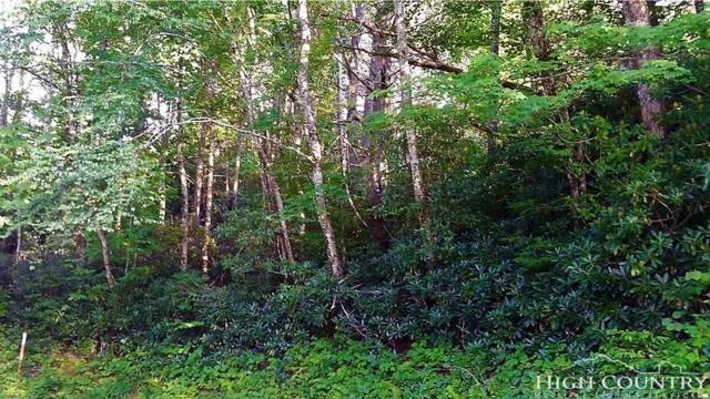 165 Sassafrass Road, Beech Mountain, NC 28604 (MLS #203293) :: Keller Williams Realty - Exurbia Real Estate Group