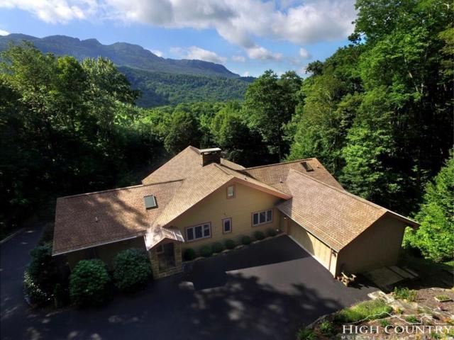 339 Letterfern Drive, Banner Elk, NC 28604 (MLS #203308) :: Keller Williams Realty - Exurbia Real Estate Group
