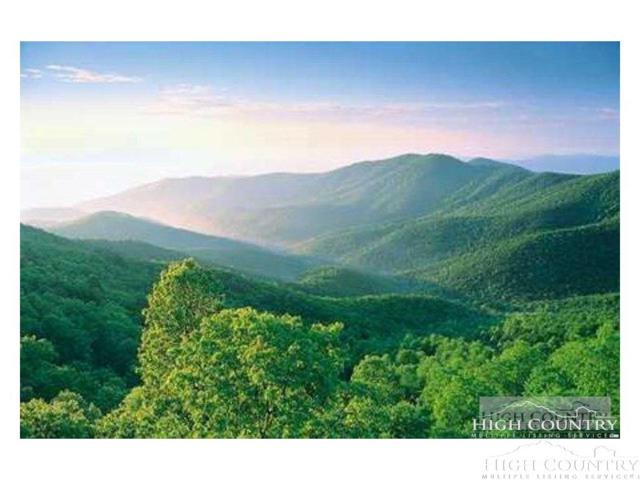 tbd Lot 5 Hm, Boone, NC 28607 (MLS #203479) :: Keller Williams Realty - Exurbia Real Estate Group