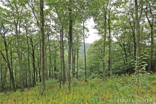 Lot 37 Adirondack Drive, Boone, NC 28607 (MLS #203497) :: Keller Williams Realty - Exurbia Real Estate Group