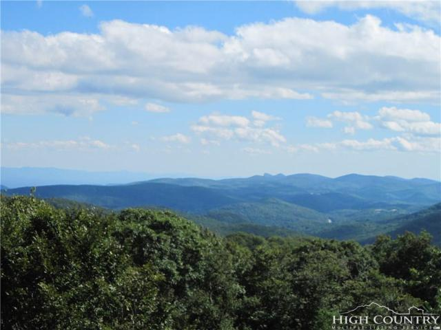 228 Windy Knoll Drive 8D, Sugar Mountain, NC 28604 (MLS #203559) :: Keller Williams Realty - Exurbia Real Estate Group