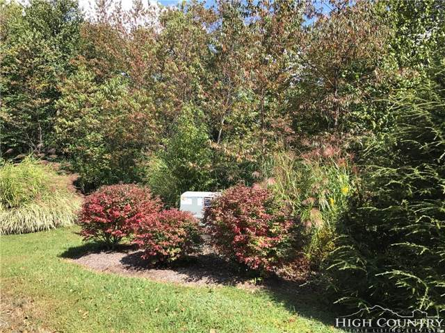 Lot #17 Black Bear Trail, Linville, NC 28646 (MLS #203626) :: Keller Williams Realty - Exurbia Real Estate Group