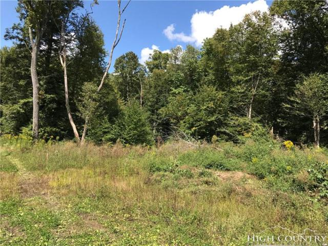 TBD Black Bear Trail, Linville, NC 28646 (MLS #203627) :: Keller Williams Realty - Exurbia Real Estate Group