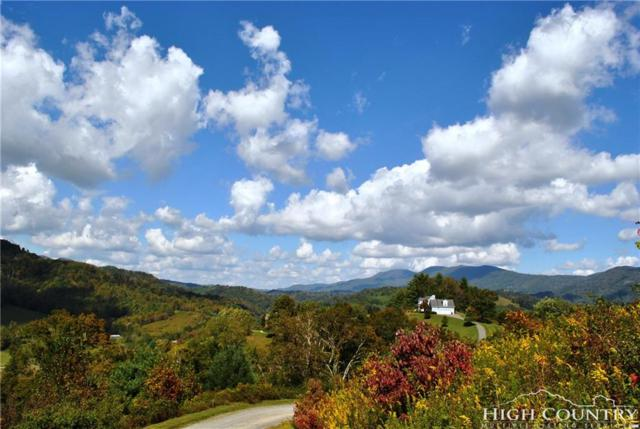 Lot 24 Old Rose Drive, Sugar Grove, NC 28679 (MLS #203662) :: Keller Williams Realty - Exurbia Real Estate Group