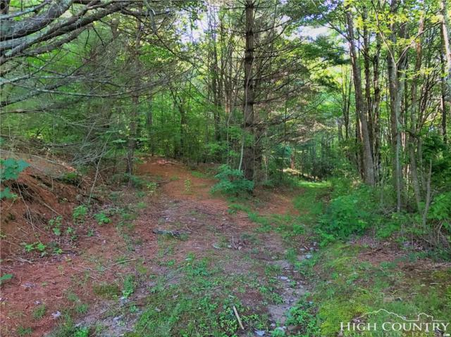 TBD Skyview Lane, Newland, NC 28657 (MLS #203677) :: Keller Williams Realty - Exurbia Real Estate Group