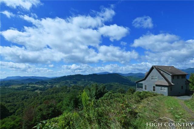 11 Wildflower Lane, Newland, NC 28657 (MLS #203697) :: Keller Williams Realty - Exurbia Real Estate Group
