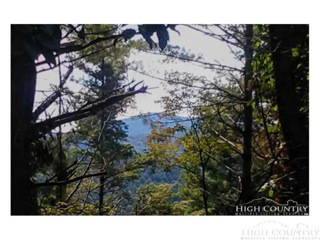 TBD Doe Run Trail, Fleetwood, NC 28626 (MLS #203736) :: Keller Williams Realty - Exurbia Real Estate Group