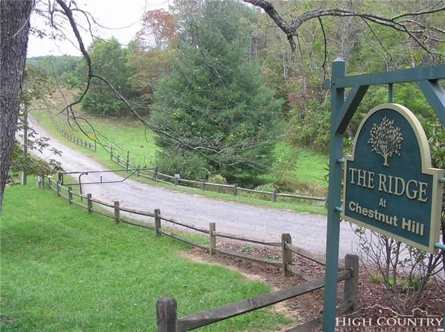 Lot 13 Deer Thicket Lane, Crumpler, NC 28617 (MLS #203749) :: Keller Williams Realty - Exurbia Real Estate Group