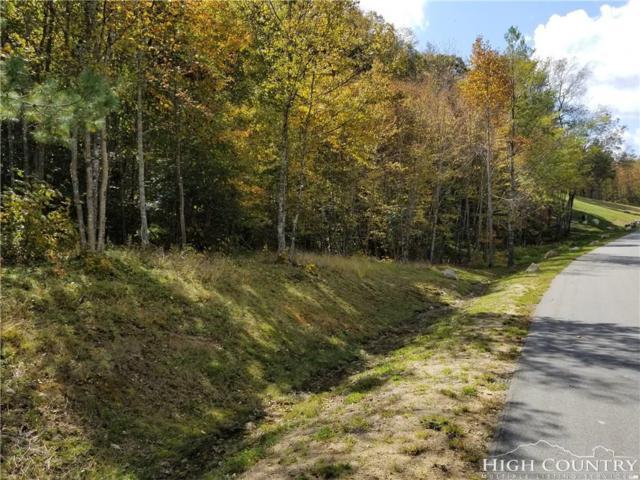 Lot 40 Eagles Nest Trail, Banner Elk, NC 28604 (MLS #203759) :: Keller Williams Realty - Exurbia Real Estate Group
