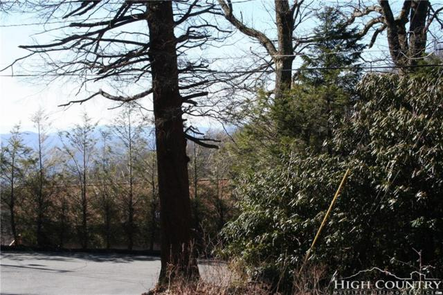 TBD Honey Hill Drive, Blowing Rock, NC 28605 (MLS #203765) :: Keller Williams Realty - Exurbia Real Estate Group
