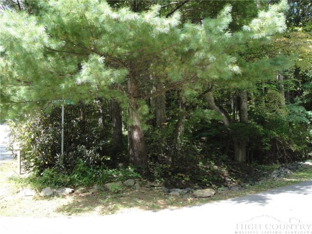 Lot 22R Thistle Lane, Banner Elk, NC 28604 (MLS #203787) :: Keller Williams Realty - Exurbia Real Estate Group