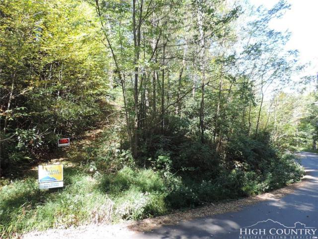 lot 2 Edith Lane, Blowing Rock, NC 28605 (MLS #203807) :: Keller Williams Realty - Exurbia Real Estate Group