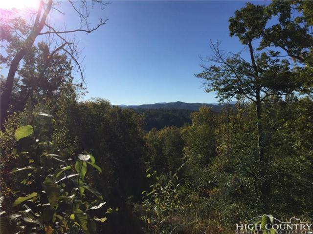 Lot 3 Cougar Run N/A, Linville, NC 28646 (MLS #203839) :: Keller Williams Realty - Exurbia Real Estate Group
