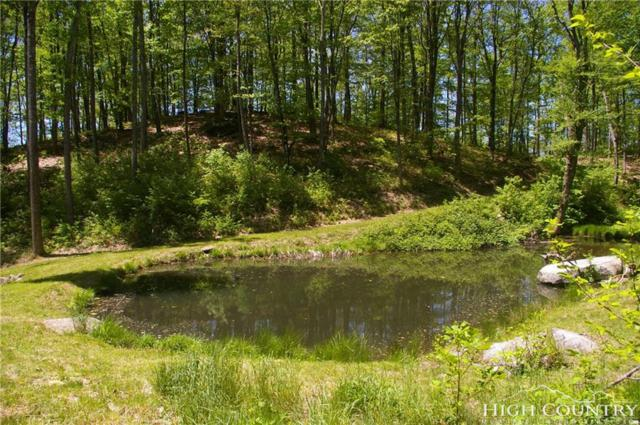 TBD Big View Trail, Lupine Lane, Ashberry Lane, Vilas, NC 28692 (MLS #203841) :: Keller Williams Realty - Exurbia Real Estate Group