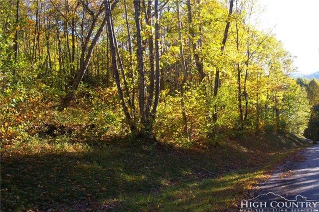 Lot 28 Quail Ridge Drive, Fleetwood, NC 28626 (MLS #203928) :: Keller Williams Realty - Exurbia Real Estate Group