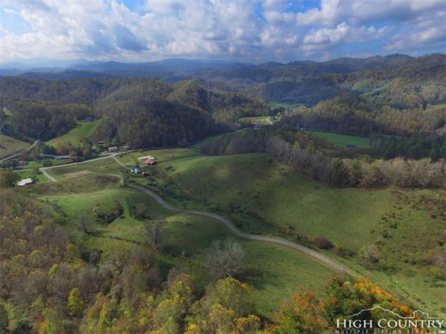 Tbd Silverstone Farms Road Road, Zionville, NC 28698 (MLS #203952) :: Keller Williams Realty - Exurbia Real Estate Group