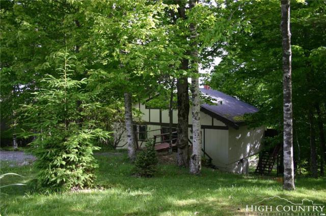 112 Pinnacle Ridge Road, Beech Mountain, NC 28604 (MLS #203965) :: Keller Williams Realty - Exurbia Real Estate Group