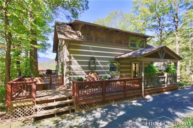 306 Mistletoe Lane, Blowing Rock, NC 28605 (MLS #203968) :: Keller Williams Realty - Exurbia Real Estate Group