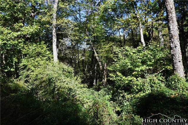Lot #13 Tree Top, Boone, NC 28607 (MLS #203979) :: RE/MAX Impact Realty