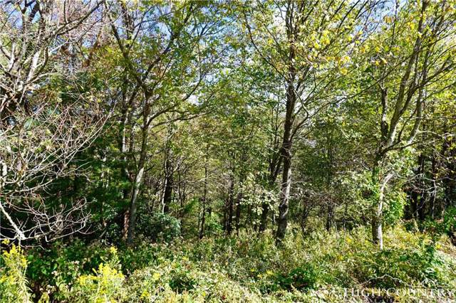 Lot #22 Center Court Drive, Boone, NC 28607 (MLS #203982) :: RE/MAX Impact Realty