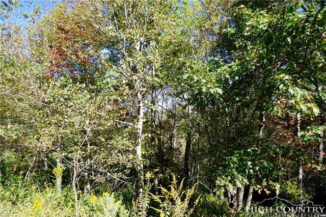 Lot #23 Center Court Drive, Boone, NC 28607 (MLS #203983) :: RE/MAX Impact Realty