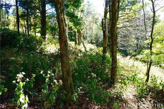 Lot #67 #68 Center Court Drive, Boone, NC 28607 (MLS #203986) :: RE/MAX Impact Realty