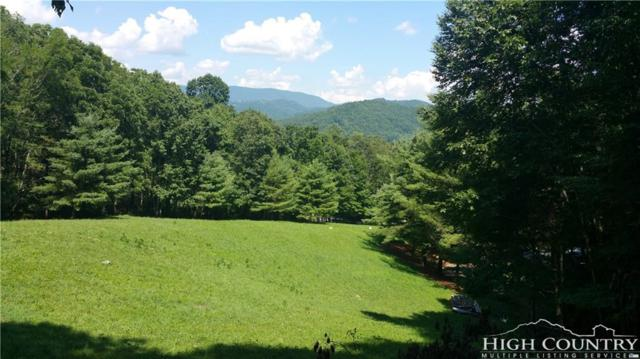 tbd Hwy 194, Banner Elk, NC 28607 (MLS #204127) :: Keller Williams Realty - Exurbia Real Estate Group