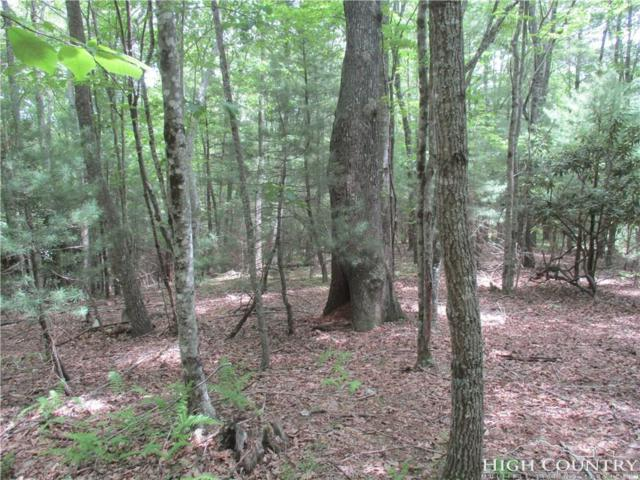 Lot 87 Colby Miller Drive, Jefferson, NC 28640 (MLS #204154) :: Keller Williams Realty - Exurbia Real Estate Group