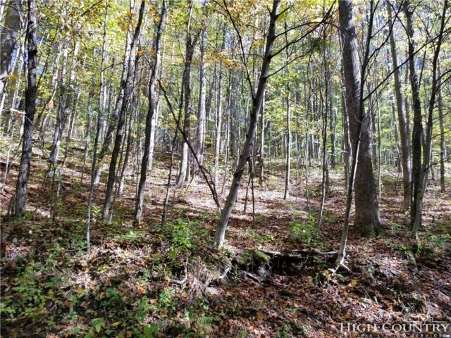 Lots 17-20 Old Chestnut Mountain Road, Newland, NC 28657 (MLS #204158) :: RE/MAX Impact Realty