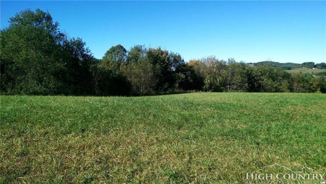 TBD Teresa's Way, Ennice, NC 28623 (MLS #204229) :: Keller Williams Realty - Exurbia Real Estate Group