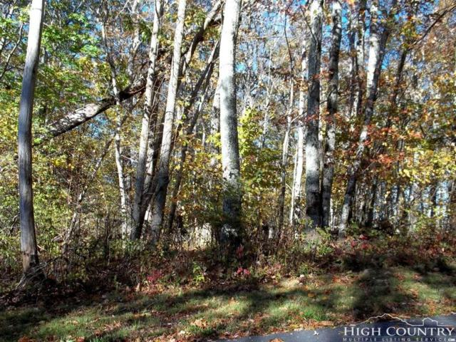 Lot 24 Meadow Avenue Loop, Banner Elk, NC 28604 (MLS #204232) :: Keller Williams Realty - Exurbia Real Estate Group