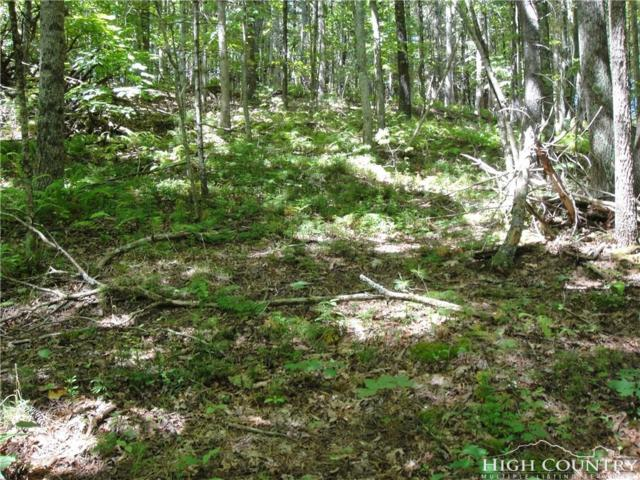 TBD W. Pond Creek Road, Beech Mountain, NC 28604 (MLS #204300) :: Keller Williams Realty - Exurbia Real Estate Group