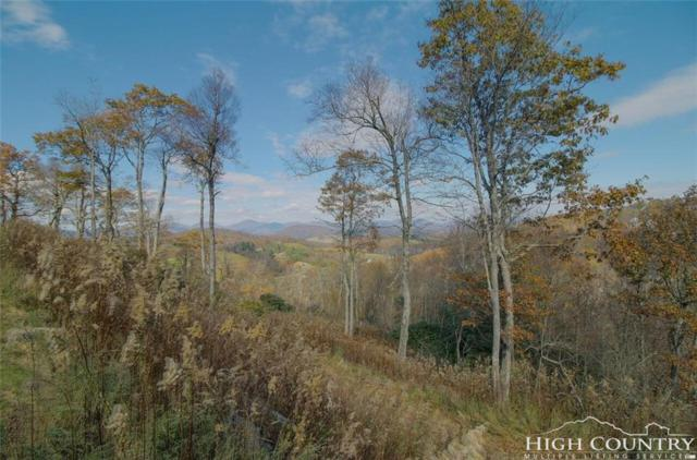 Lot 18 Antler Trail, Blowing Rock, NC 28605 (MLS #204422) :: Keller Williams Realty - Exurbia Real Estate Group