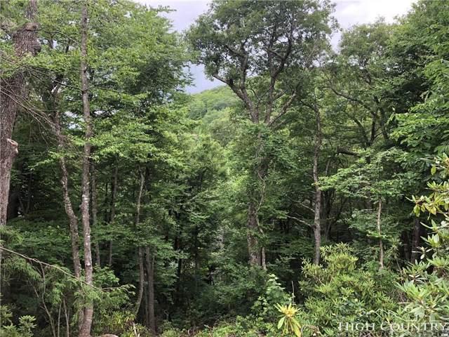 TBD Highland Ridge Road, Blowing Rock, NC 28605 (MLS #204517) :: RE/MAX Impact Realty
