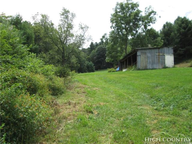 TBD Highway 18 North Road, Ennice, NC 28623 (MLS #204536) :: Keller Williams Realty - Exurbia Real Estate Group