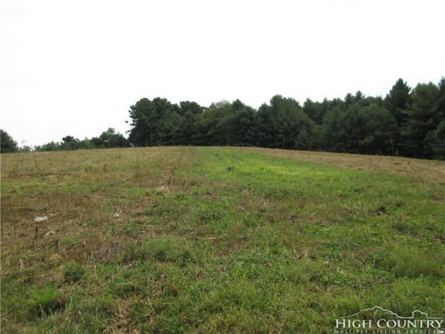 TBD Highway 18 North Road, Ennice, NC 28623 (MLS #204537) :: Keller Williams Realty - Exurbia Real Estate Group