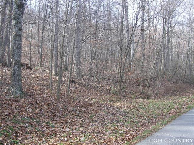 Lot 39 Hillside Lane, Jefferson, NC 28640 (MLS #204543) :: Keller Williams Realty - Exurbia Real Estate Group