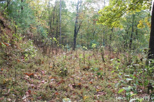 230 Elk Ridge Road, Ferguson, NC 28624 (MLS #204565) :: Keller Williams Realty - Exurbia Real Estate Group