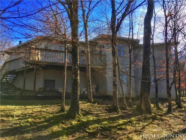 110 N Pinnacle Ridge Drive, Beech Mountain, NC 28604 (MLS #204573) :: Keller Williams Realty - Exurbia Real Estate Group