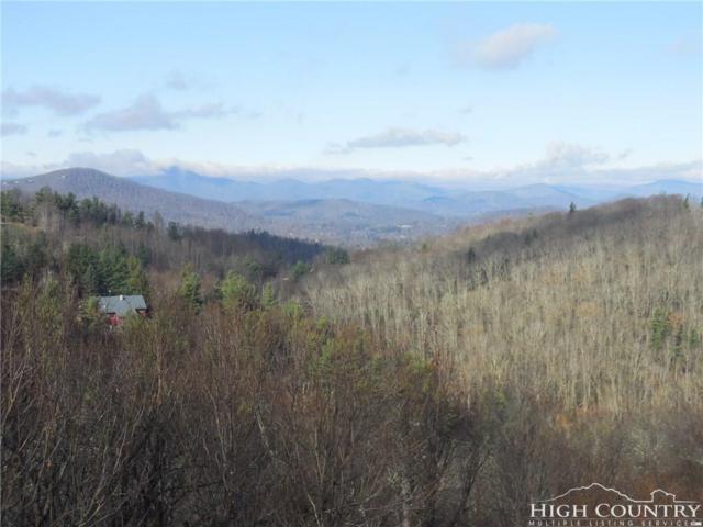 250 Ski Acres Drive, Blowing Rock, NC 28605 (MLS #204608) :: Keller Williams Realty - Exurbia Real Estate Group