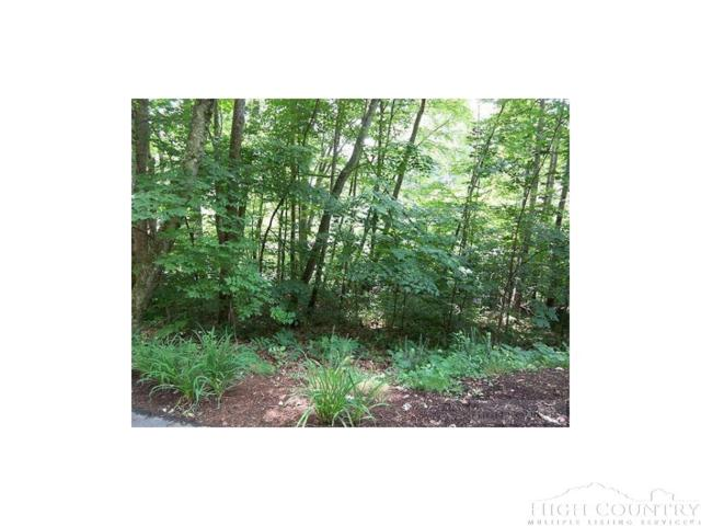 Lot 13 Shady Bark Lane, Boone, NC 28607 (MLS #204800) :: RE/MAX Impact Realty
