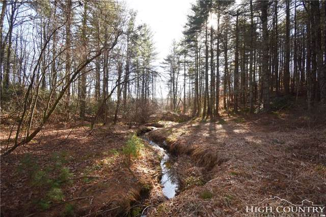 TBD Lower Nettle Knob Road, West Jefferson, NC 28694 (MLS #204864) :: Keller Williams Realty - Exurbia Real Estate Group
